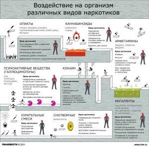 Воздействие на организм различных видов наркотиков